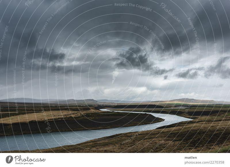 Corioliskraft Natur Landschaft Luft Wasser Himmel Wolken Horizont Frühling schlechtes Wetter Wind Gras Berge u. Gebirge Küste Flussufer dunkel braun grau Island