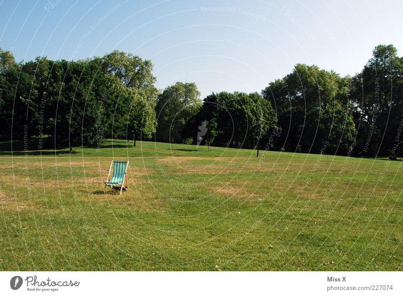 Einsam Natur grün Baum Sommer Einsamkeit Wiese Gras Park Stuhl einzeln Schönes Wetter Sitz Blauer Himmel Wolkenloser Himmel London Gartenstuhl