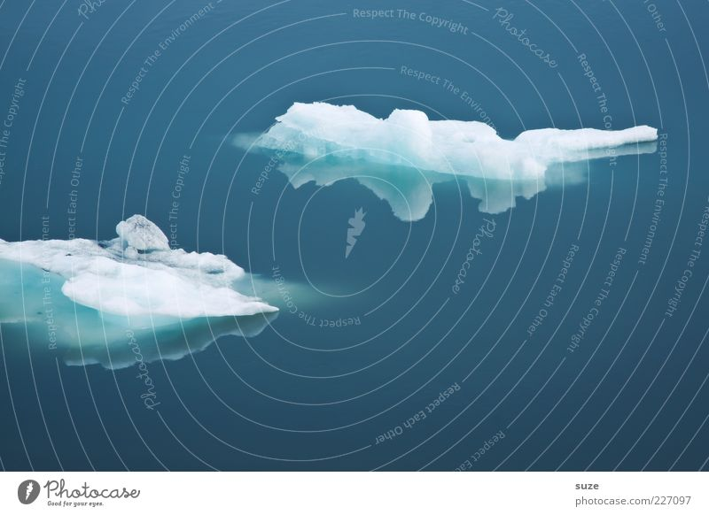 Schwimmer Meer Umwelt Natur Klima Eis Frost kalt blau Island schmelzen Jökulsárlón Eissee Polarmeer Klarheit Eisscholle ruhig Wasseroberfläche Farbfoto