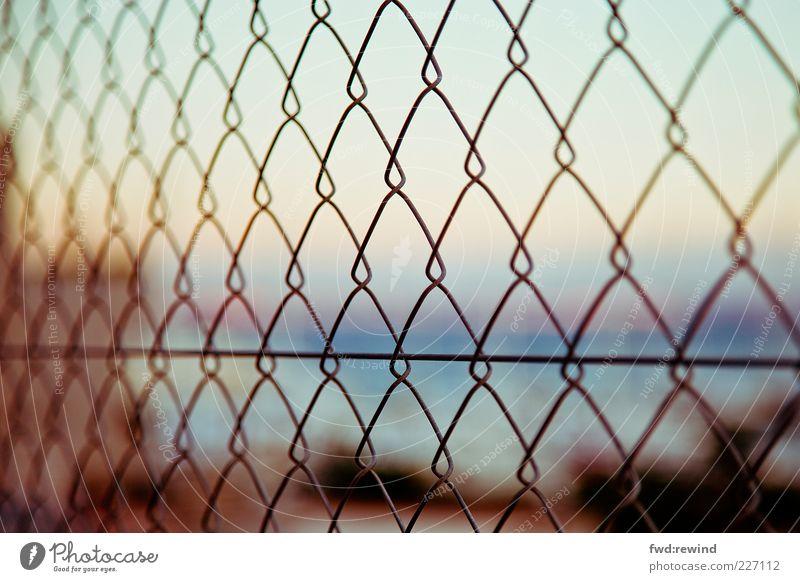 Ferne Sommer Horizont gold geschlossen Hoffnung Metallwaren Sehnsucht Zaun Barriere Fernweh gefangen Rechteck Durchblick Heimweh schemenhaft Käfig