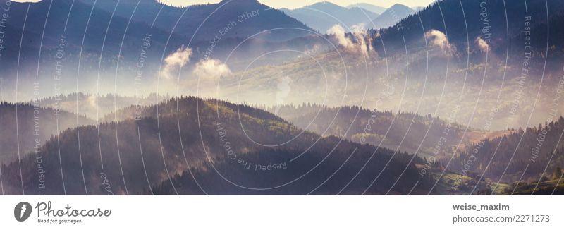 Frühling Bergpanorama. Nebeliger Wald auf Hügeln Himmel Natur Ferien & Urlaub & Reisen Pflanze Sommer Farbe schön grün Landschaft Baum Ferne Berge u. Gebirge