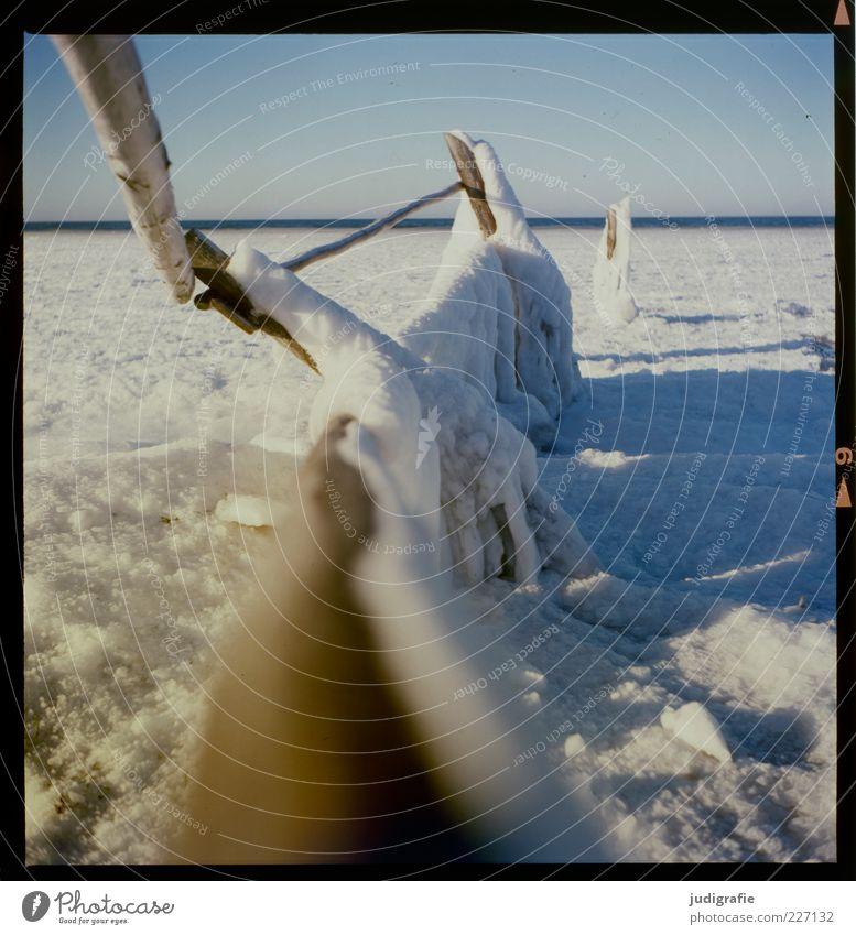 Darßer Ort Umwelt Natur Landschaft Winter Klima Eis Frost Schnee Küste Strand Ostsee kalt Zaun Begrenzung Grenze Holz Farbfoto Außenaufnahme Menschenleer Tag