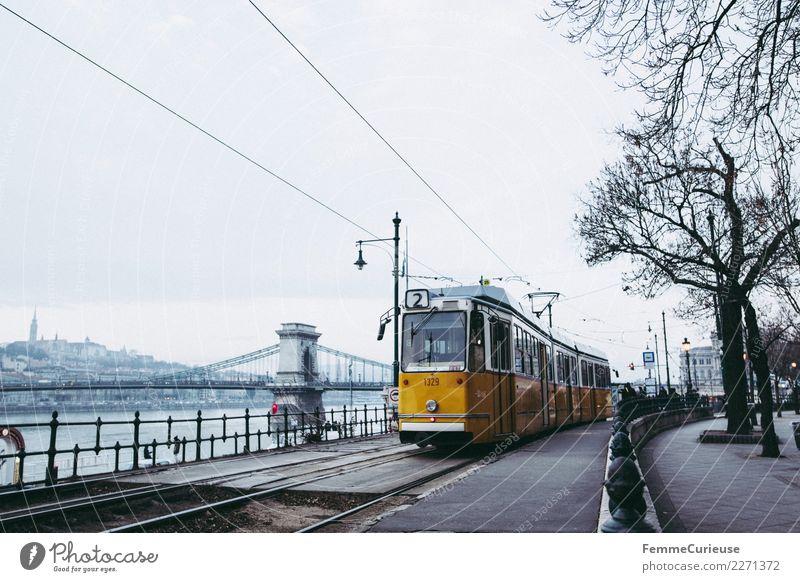 Tram in Budapest next to Danube (Donau) Winter gelb Verkehr Brücke Güterverkehr & Logistik Gleise Verkehrswege Personenverkehr Verkehrsmittel bedeckt