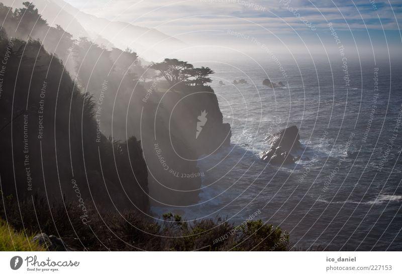 Big Sur - California Ferne Freiheit Wellen Natur Landschaft Wasser Himmel Sonnenaufgang Sonnenuntergang Sonnenlicht Schönes Wetter Nebel Baum Meer Pazifik schön
