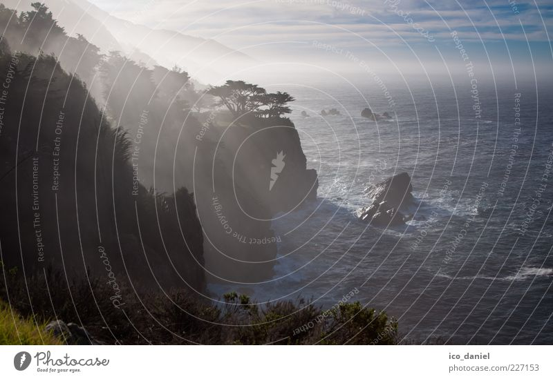 Big Sur - California Himmel Natur Wasser schön Baum Meer Ferne Freiheit Landschaft Wellen Nebel Felsen Romantik Schönes Wetter Fernweh Brandung
