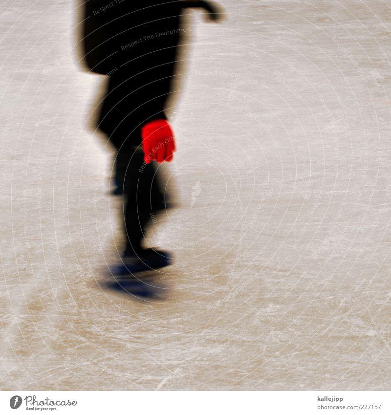 handschuhlaufen Lifestyle Freizeit & Hobby Spielen Sport Wintersport Mensch 1 Klima Eis Frost fahren Schlittschuhlaufen Schlittschuhe Handschuhe rot Eisfläche