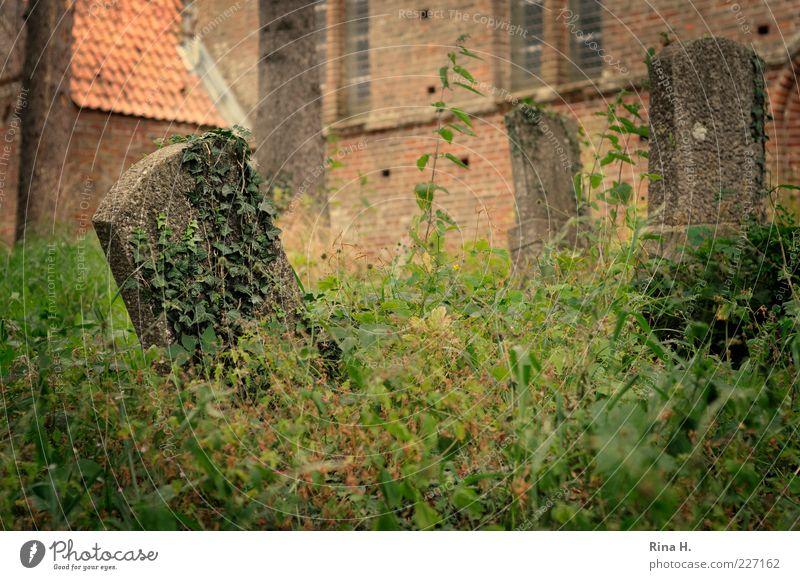 Vergessen Sommer ruhig Tod Gefühle Traurigkeit Religion & Glaube trist Kirche Vergänglichkeit Vergangenheit Verfall Ewigkeit schäbig Friedhof Neigung