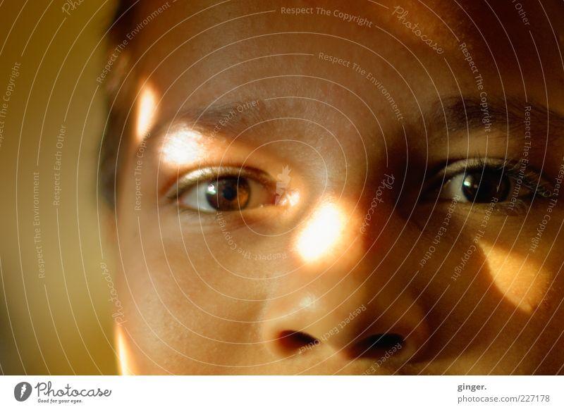 LichtBlick Mensch Kind Jugendliche Gesicht Auge Junge braun Kindheit Zufriedenheit glänzend Nase maskulin authentisch beobachten Freundlichkeit Wohlgefühl