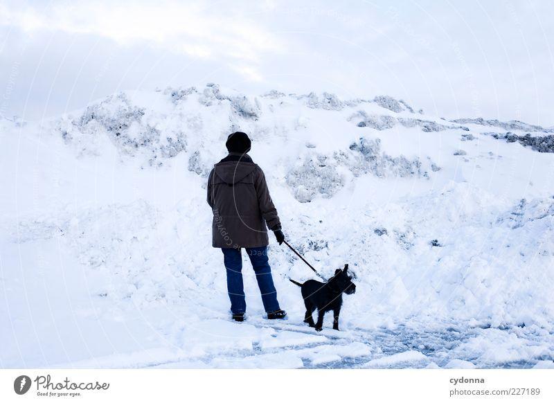 Sackgasse Ausflug Freiheit Winterurlaub Mensch Umwelt Natur Landschaft Eis Frost Schnee Berge u. Gebirge Hund Bewegung Einsamkeit Ende geheimnisvoll Idee Leben