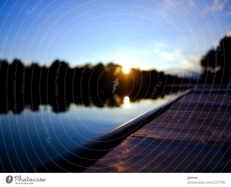 am steg Umwelt Natur Landschaft Pflanze Urelemente Luft Wasser Himmel Wolken Horizont Sonne Sonnenaufgang Sonnenuntergang Sonnenlicht Sommer Schönes Wetter