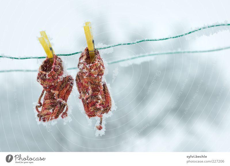 Bis die trocken sind ... Winter gelb kalt Schnee Garten klein Wetter braun Schuhe Eis Mode Klima Bekleidung Frost gefroren frieren