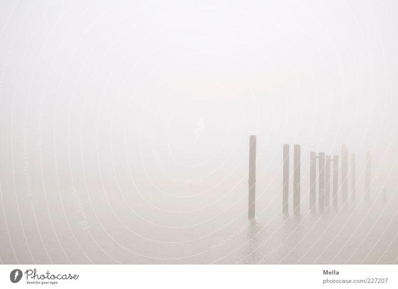 Ganz schön viele Natur ruhig Umwelt grau Küste Nebel Klima stehen trist geheimnisvoll Pfosten Dunst Strebe trüb Gewässer Poller