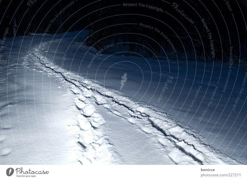 Koalition in der Nacht Schnee Wege & Pfade Winter Wald Natur Beleuchtung Ziel Fußspur Spuren dunkel 2 Synthese Mischung verbinden verschmelzen gruselig Angst
