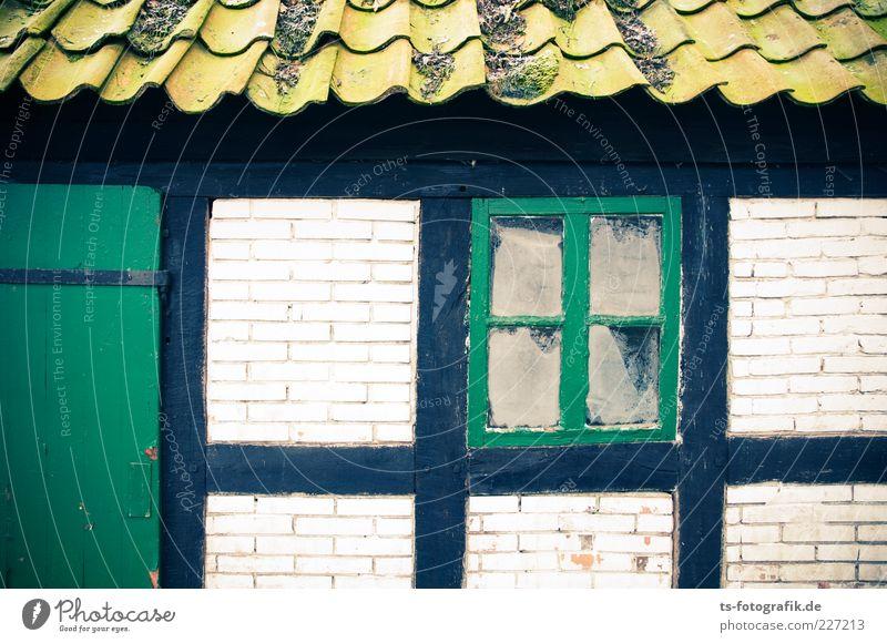 Worpsweder Grüntöne alt grün Haus Farbe Wand Fenster Mauer Gebäude Tür Fassade kaputt Romantik Dach verfallen Bauwerk Quadrat