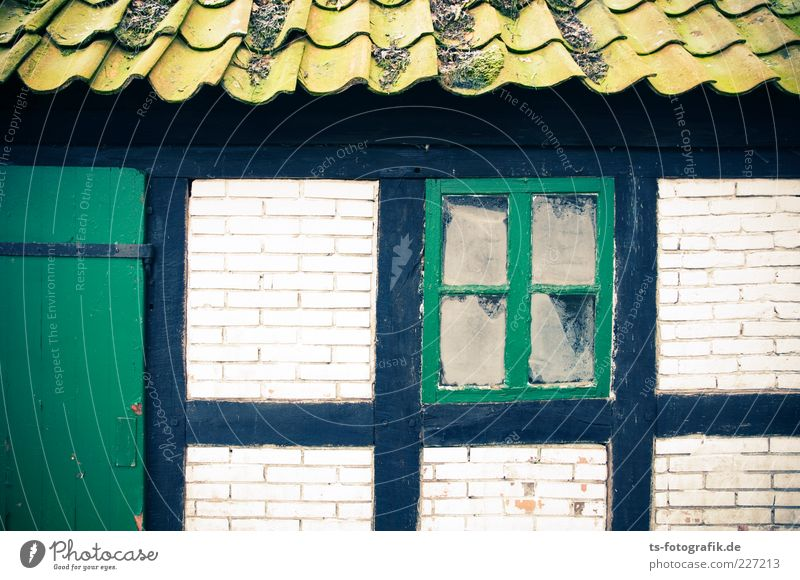 Worpsweder Grüntöne Menschenleer Haus Hütte Bauwerk Gebäude Mauer Wand Fenster Tür Dach alt kaputt grün Farbe Fachwerkfassade Fachwerkhaus Dachziegel Moos