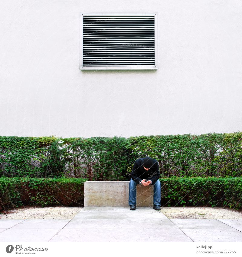 arte - sendeschluss Lifestyle maskulin Mann Erwachsene 1 Mensch Pflanze Sträucher Garten Park Jeanshose Jacke Mütze sitzen Lüftung Streifen Buchsbaum Hecke
