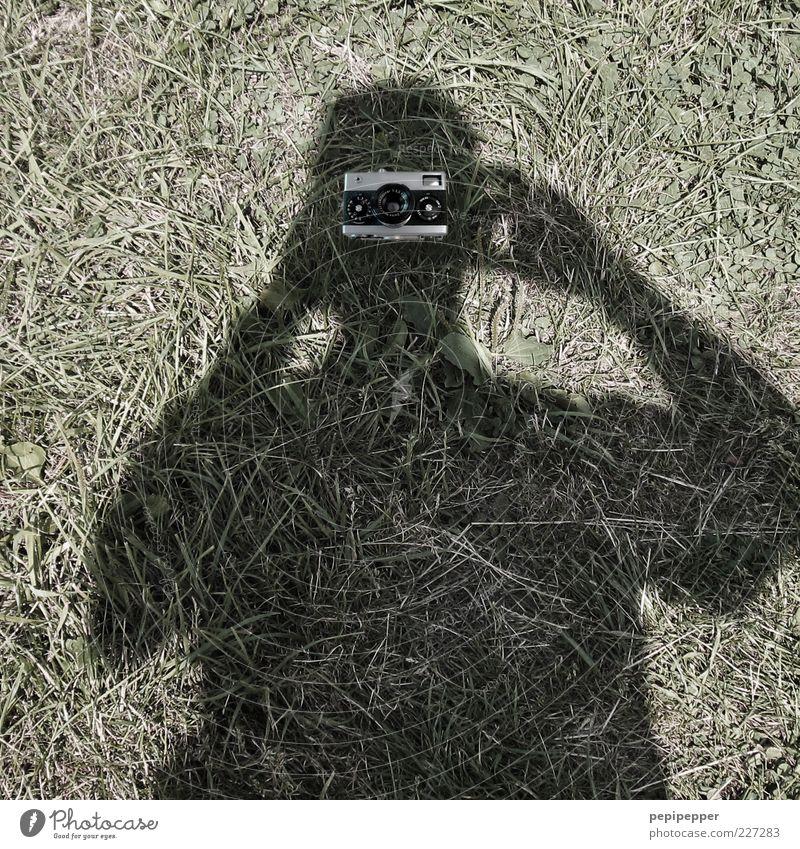 Blick in die Kamera Mensch grün Wiese Kopf grau Gras lustig Arme maskulin liegen außergewöhnlich Perspektive Fotokamera skurril machen Fotograf