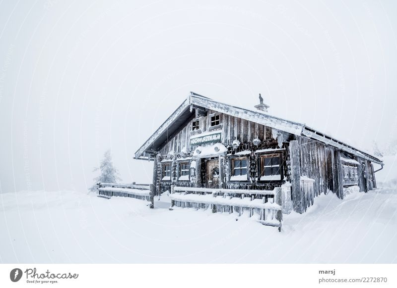 Ripperl Winter Wetter Sturm Eis Frost Schnee Schneefall Holz kalt Hüttenferien Berghütte heimelig Vorfreude Schutz Winterurlaub Farbfoto Gedeckte Farben