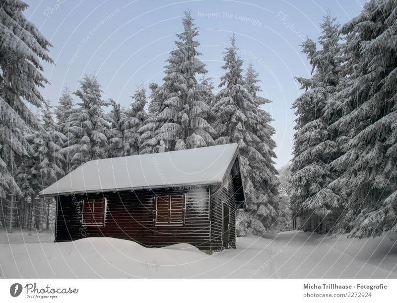 Hütte im verschneiten Wald Ferien & Urlaub & Reisen Tourismus Winter Schnee Winterurlaub wandern Haus Wintersport Skifahren Rodeln Natur Landschaft Himmel