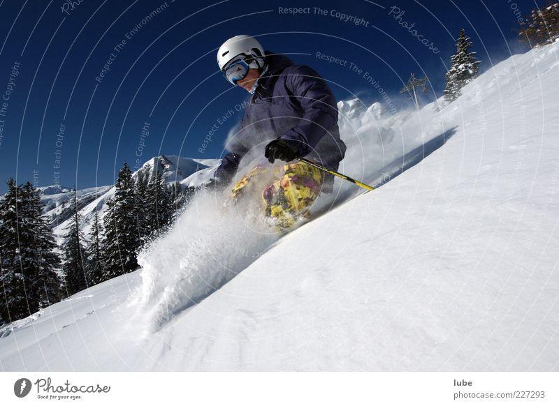 Tiefschneerausch Ferien & Urlaub & Reisen Tourismus Freiheit Winter Schnee Winterurlaub Berge u. Gebirge Wintersport Skier 1 Mensch Natur Landschaft