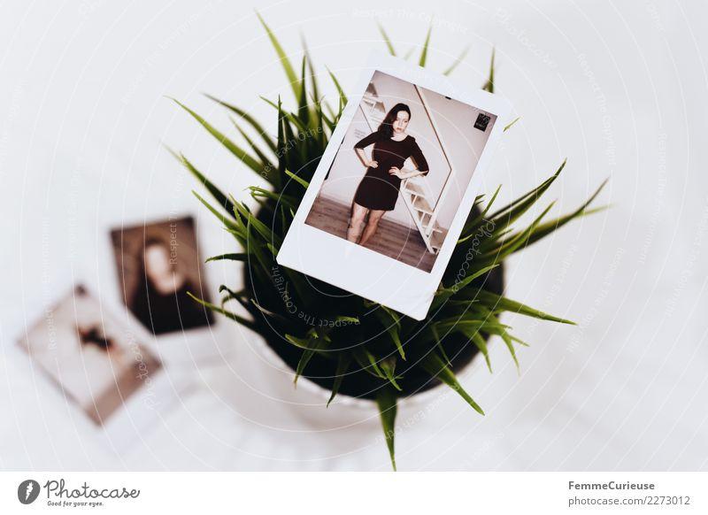 Instant pictures showing a young woman feminin Junge Frau Jugendliche Erwachsene 1 Mensch 18-30 Jahre Kleid bordeaux Grünpflanze Tischplatte weiß Fotografie
