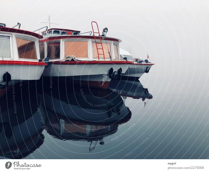 Müritzsee   off season Tourismus Ausflug Winter Wasser Nebel See Ausflugsschiff Anlegestelle kalt maritim blau grau rot Fernweh Einsamkeit Erholung Stimmung