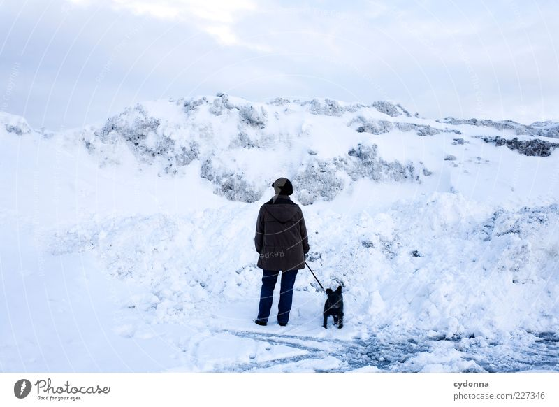 Eiszeit Mensch Himmel Natur Winter ruhig Einsamkeit Ferne Leben Schnee Freiheit Umwelt Berge u. Gebirge Landschaft Wege & Pfade Hund träumen