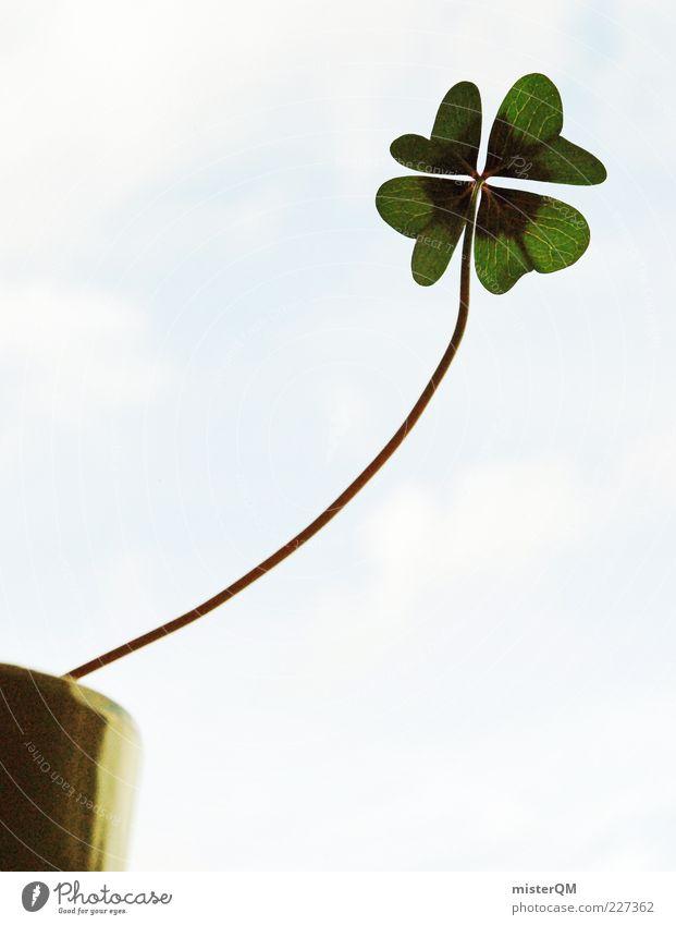 Vom Streben nach Glück... grün Pflanze Glück hoch Erfolg Wachstum Zukunft außergewöhnlich Ziel Symbole & Metaphern lang Stengel aufwärts positiv Blumentopf Blume
