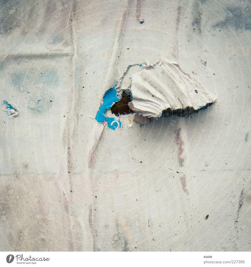 Akkordeon Printmedien Mauer Wand Papier alt dreckig kaputt trashig trist trocken Verfall Wandel & Veränderung Werbung Fetzen gerissen Poster Plakat Plakatwand