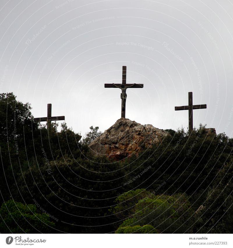 Trinitas Umwelt Natur Landschaft Himmel Sträucher Zeichen Kruzifix Christliches Kreuz Christentum Glaube Jesus Christus historisch Kraft Vertrauen Sympathie