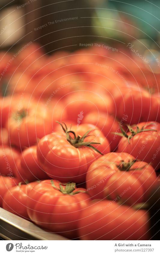 it's time to tomato Lebensmittel Gemüse Tomate Bioprodukte liegen rund rot reif Markt Farbfoto Innenaufnahme Menschenleer Schwache Tiefenschärfe viele frisch