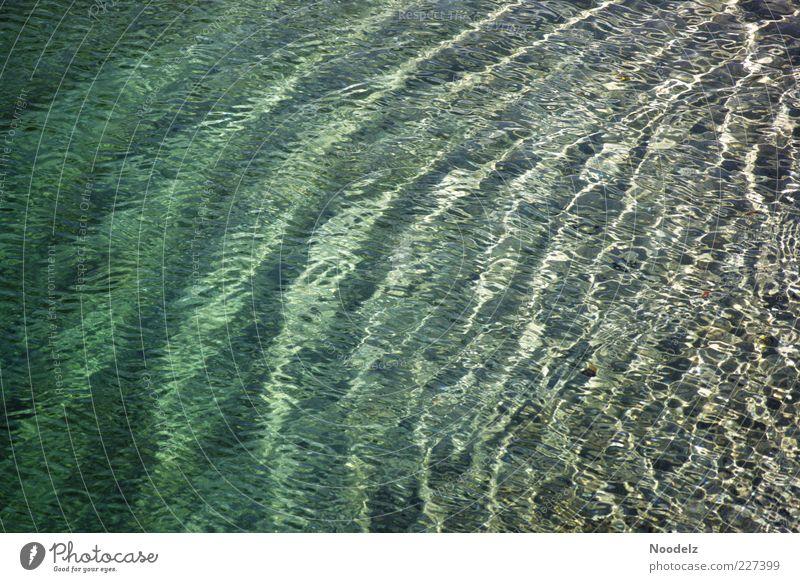 Atmung des Ozeans Umwelt Natur Urelemente Wasser Wellen Meer Ferien & Urlaub & Reisen ästhetisch authentisch fantastisch Flüssigkeit frisch glänzend kalt nass