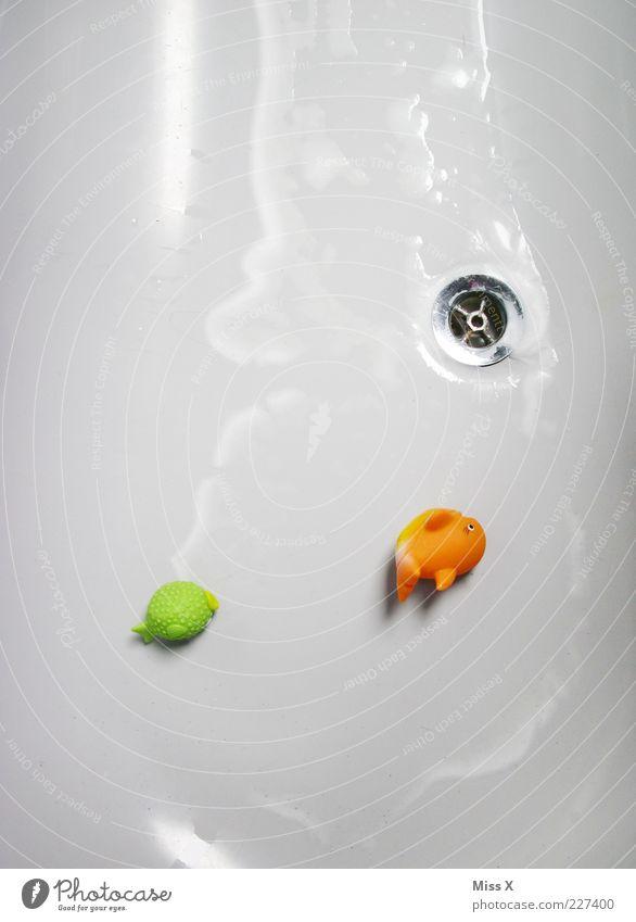 Die Wanne ist leer ... Wasser weiß grün Freude Spielen orange Kindheit Freizeit & Hobby liegen Schwimmen & Baden Fisch Ende Kunststoff Badewanne
