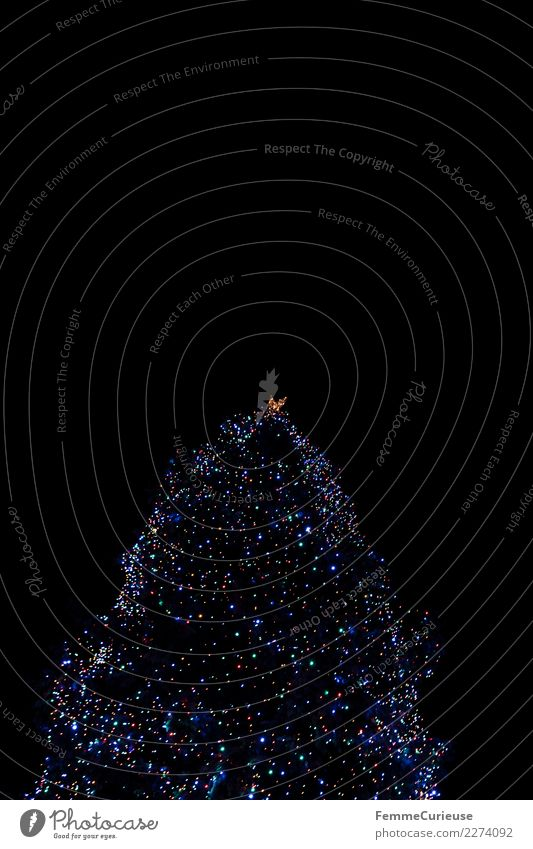 Christmas tree with colorful lights at night Zeichen Religion & Glaube Tradition Weihnachtsbaum Weihnachtsbaumspitze Licht Lichterkette Lichtermeer Leuchtpunkt