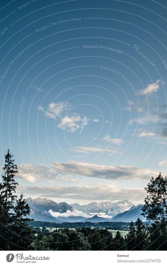 Hallo, Zugspitze Himmel Ferien & Urlaub & Reisen Natur Sommer blau Landschaft Baum Erholung Wolken ruhig Ferne Berge u. Gebirge Freiheit Ausflug Zufriedenheit