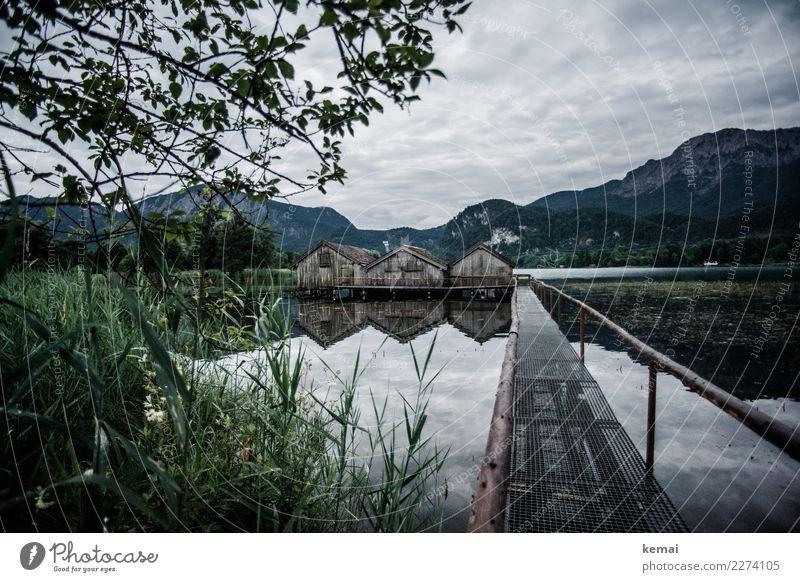 Morgen am Kochelsee Sinnesorgane Erholung ruhig Ferien & Urlaub & Reisen Abenteuer Freiheit Landschaft Wasser Himmel Wolken Wetter Baum Gras Sträucher Alpen