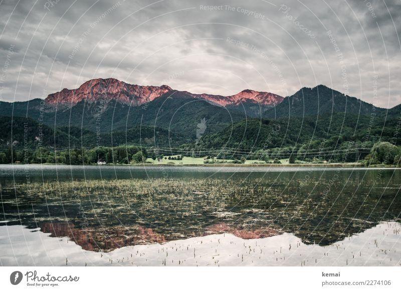 Alpenglühen (morgens) Himmel Ferien & Urlaub & Reisen Natur Sommer schön Wasser Landschaft Erholung Wolken ruhig Wald Ferne Berge u. Gebirge Freiheit See Felsen