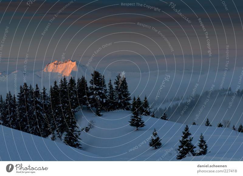 Apres Ski Winter Schnee Klima Schönes Wetter Nebel Eis Frost Alpen Berge u. Gebirge Gipfel Schneebedeckte Gipfel blau ruhig Textfreiraum oben Licht Schatten