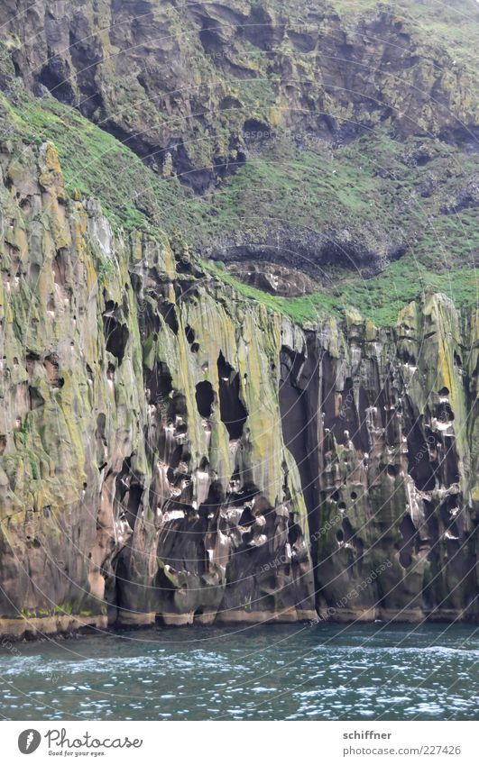 Schweizer Käse Wasser Meer Landschaft Küste Felsen hoch wild Loch vertikal steil Fjord Vulkan Höhle Naturphänomene Felswand vulkanisch