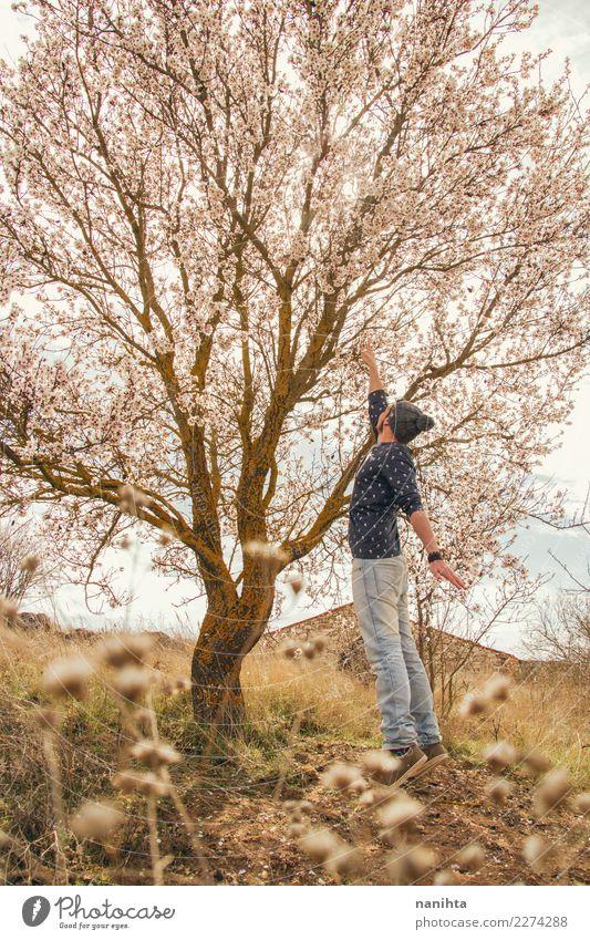 Junger Mann, der einen blühenden Baum berührt Mensch Natur Jugendliche Pflanze Sommer schön Freude Erwachsene Leben Lifestyle Umwelt Herbst Blüte