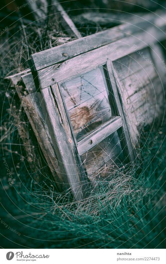 Altes und gebrochenes hölzernes Fenster Umwelt Natur Pflanze Gras Holz Glas Kristalle alt dreckig dunkel authentisch einfach Billig kaputt retro grau grün Armut