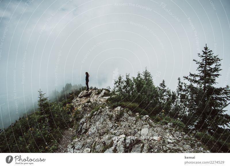 Am Gipfel Mensch Himmel Natur Ferien & Urlaub & Reisen Baum Erholung Wolken ruhig Ferne Berge u. Gebirge Lifestyle Umwelt Herbst Freiheit Felsen Ausflug