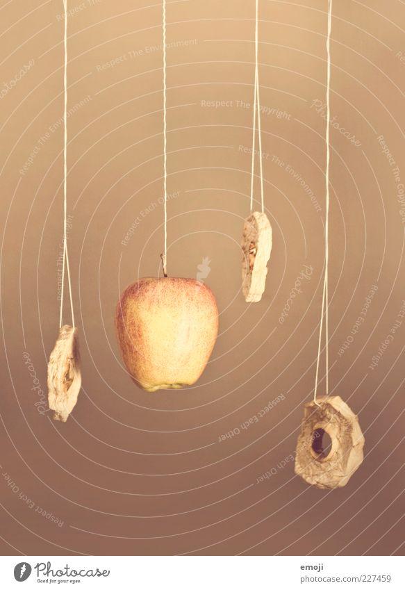         Frucht Apfel Ernährung Bioprodukte süß trocken hängen trocknen Trockenfrüchte Schnur Prozess Stillleben Farbfoto Innenaufnahme Hintergrund neutral