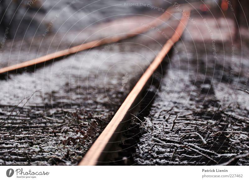 stillgelegt alt ruhig Ferne kalt Umwelt Verkehr Boden fahren Unendlichkeit Gleise Damm geradeaus Schienenverkehr stilllegen Schienennetz