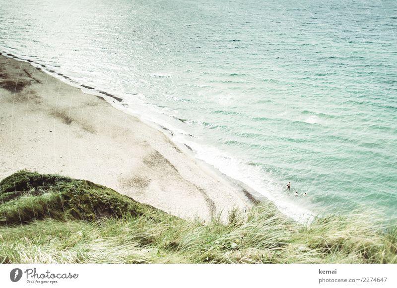 Dünenblick Mensch Ferien & Urlaub & Reisen Sommer Wasser Landschaft Meer Ferne Strand Lifestyle Leben Wärme Küste Tourismus Spielen Freiheit Schwimmen & Baden