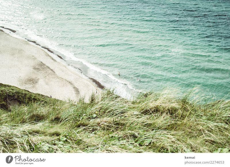 Strandtag Mensch Ferien & Urlaub & Reisen Natur Sommer schön grün Wasser Landschaft Meer Erholung Leben Tourismus Spielen Freiheit Menschengruppe