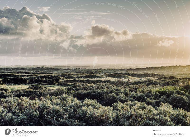 Strandland Himmel Ferien & Urlaub & Reisen Natur Sommer schön grün Landschaft Erholung Wolken ruhig Ferne Wärme Küste Freiheit Ausflug Zufriedenheit