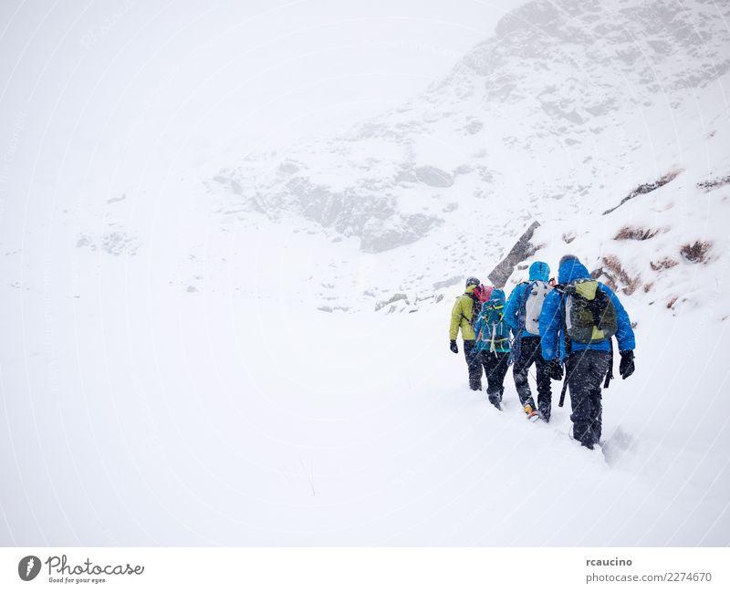 Mensch Ferien & Urlaub & Reisen blau Landschaft weiß Winter Berge u. Gebirge Schnee Sport Tourismus Menschengruppe wandern Nebel Wetter Kraft Europa
