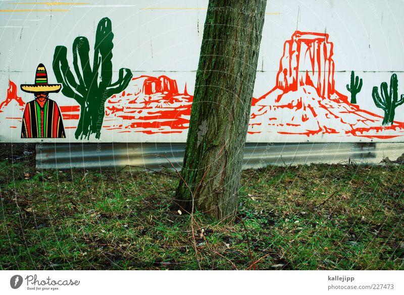 5.566 meilen richtung westen Natur Baum Pflanze Ferne Wiese Freiheit Umwelt Berge u. Gebirge Landschaft Garten Park Erde Lifestyle stehen USA Hügel