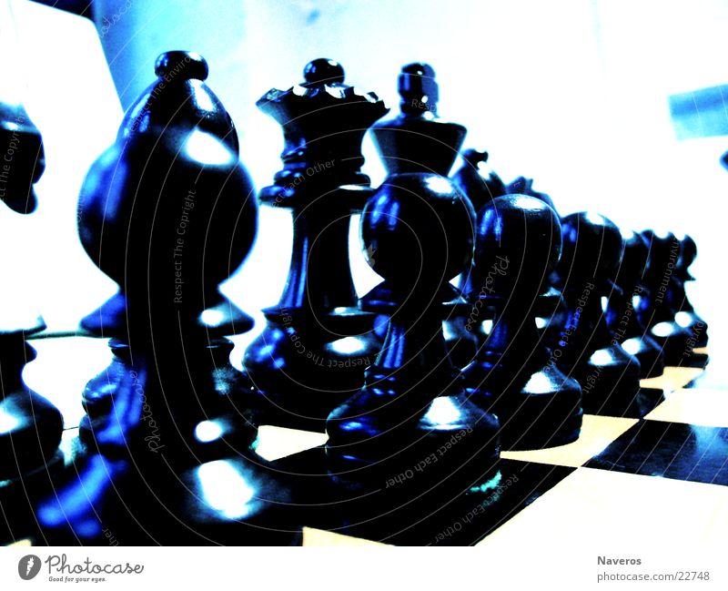 Schachfiguren weiß schwarz Spielen planen Brettspiel Freizeit & Hobby Chess Denken Verstand Reihe Dame König Startposition Makroaufnahme